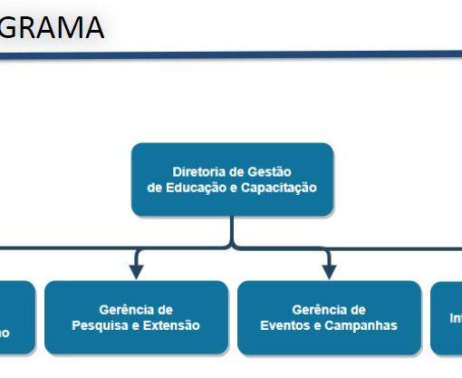 organograma dgec